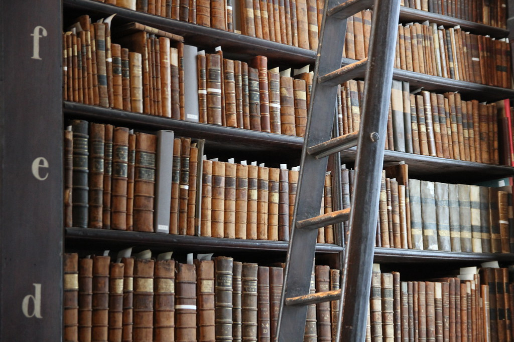 Ladder and books by Marco Zanferrari is licensed under CC BY-SA 2.0